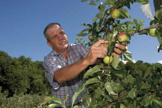 apple-farmer-lowres
